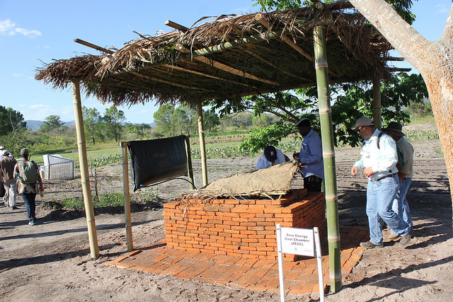 Knowledge as a remedy to postharvest loss