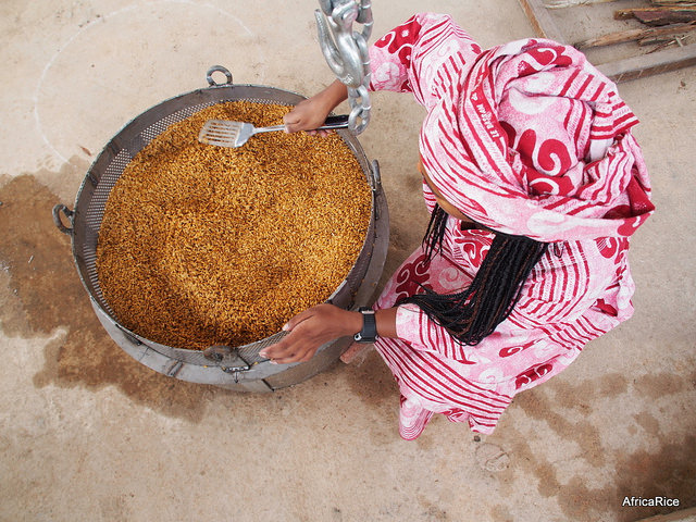 Reducing rice post-harvest losses in sub-Sahara Africa (SSA)