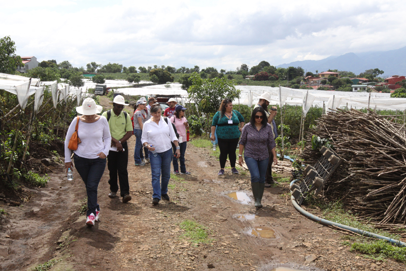 PEF workshop in Costa Rica on the assessment of postharvest losses