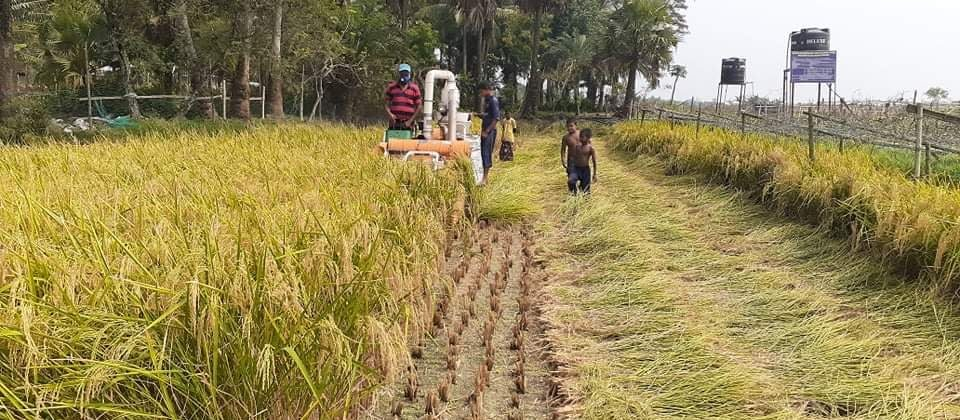 ADMI partners work to help farmers during pandemic